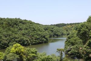 水と緑の絶景スポット