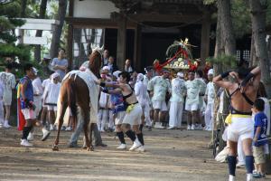 馬と神輿の戦い