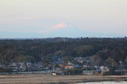 タワーから見た富士山