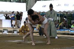 大人の相撲は迫力満点