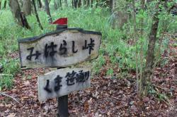 森の中の案内板
