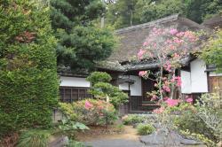 大塲家住宅庭園