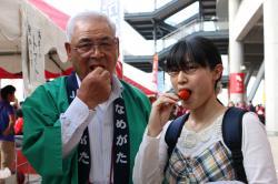 ミニトマト試食