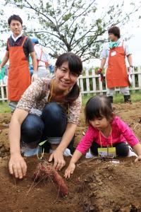 『スカイツリー金時収穫祭4』の画像