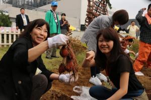 『スカイツリー金時収穫祭6』の画像