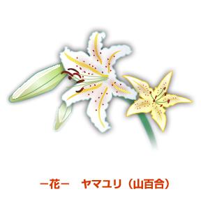 『市の花:ヤマユリ』の画像