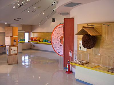 『玉のミュージアム』の画像