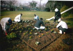 『地域コミュニティ2』の画像