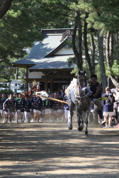 『馬と神輿』の画像