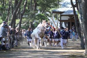 『馬とお神輿2』の画像