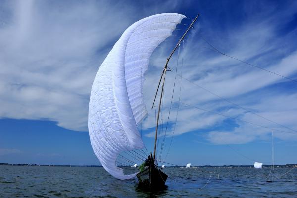 『2015帆引き』の画像
