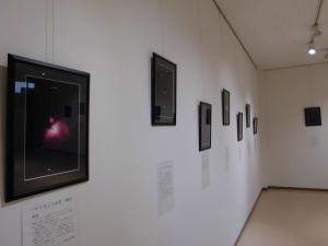 『星5』の画像
