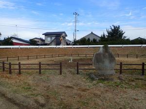 『高須の一本松跡』の画像
