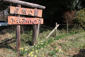 『20170414ふれあいの森の桜03』の画像