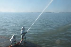 『20180106消防出初式放水』の画像