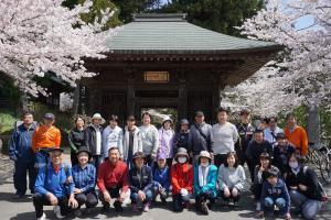 『桜2』の画像