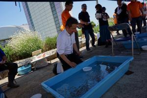 『全国金魚すくい選手権大会関東大会』の画像