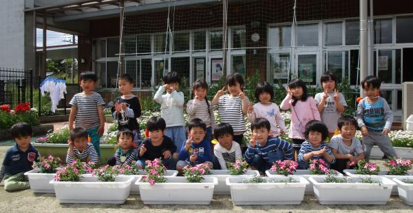 『幼稚園花寄贈(5)』の画像