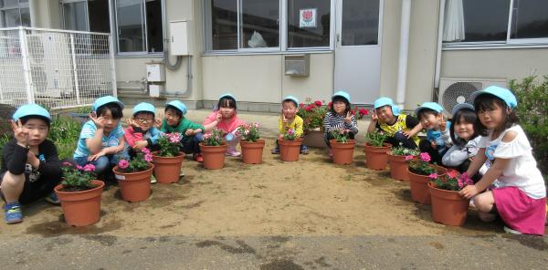 『幼稚園花寄贈(6)』の画像
