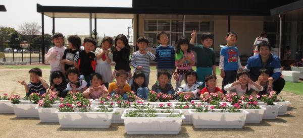 『幼稚園花寄贈(1)』の画像