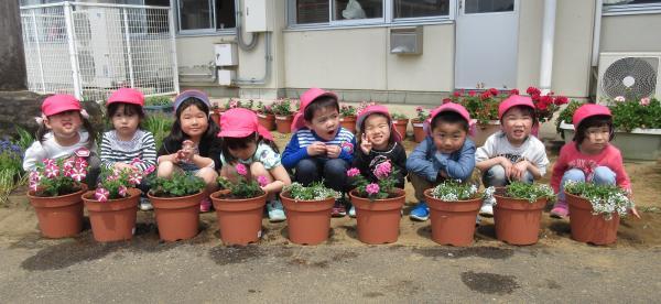 『幼稚園花寄贈(2)』の画像