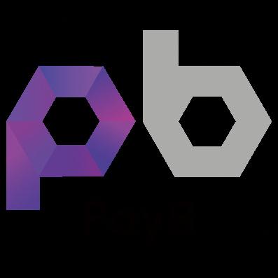 『payB』の画像