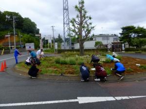 『高校生会 花壇の植替え』の画像