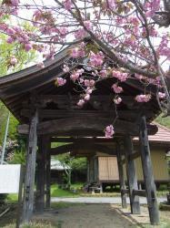常福寺 山門